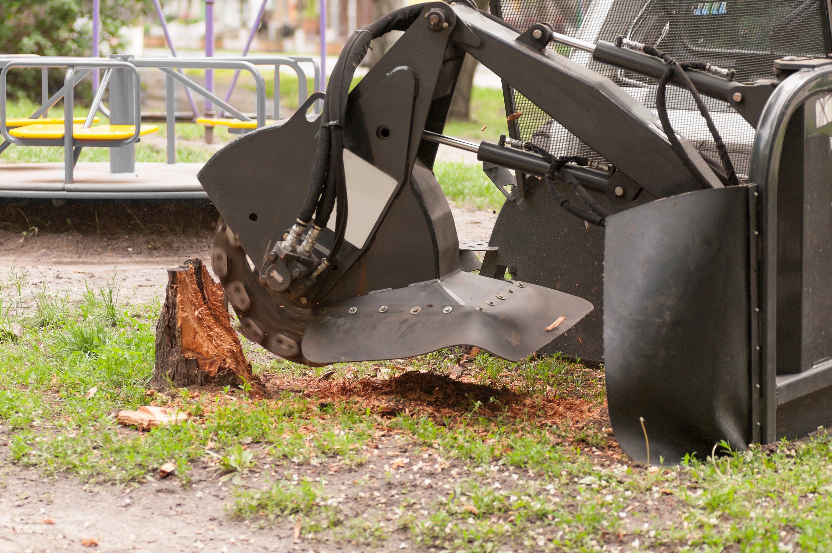Commercial shredder for sawn wood